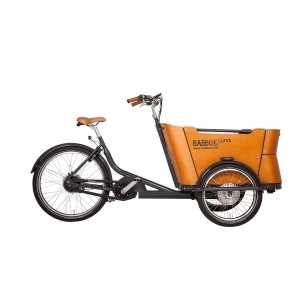Babboe Curve Mountain-500WH